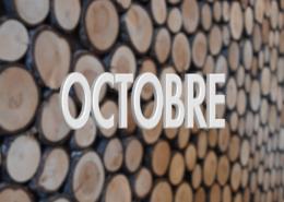 Les projets du mois d'Octobre 2019