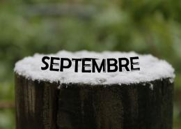 Les projets du mois de Septembre 2019